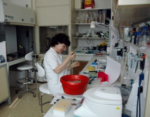 Institute of Microbiology, sample preparation