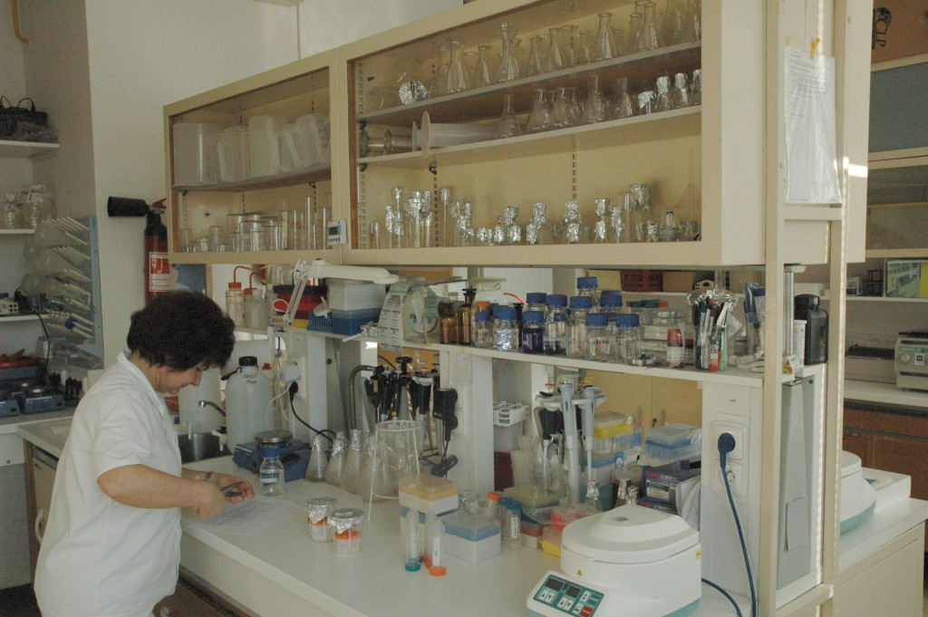 Laboratory at the Institute of Microbiology, CAS CZ