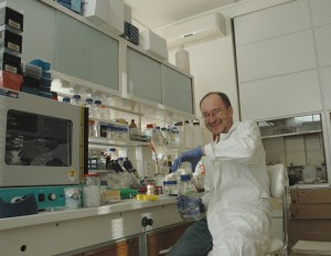 Institute of Microbiology, RNA extraction and preparation of gels for Northern blot