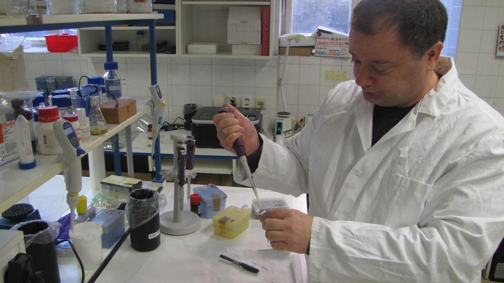 Přírodovědecká fakulta UK, příprava fragmentů DNA