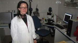 Faculty of Science, wide-field and fluorescence microscopy of yeast colonies