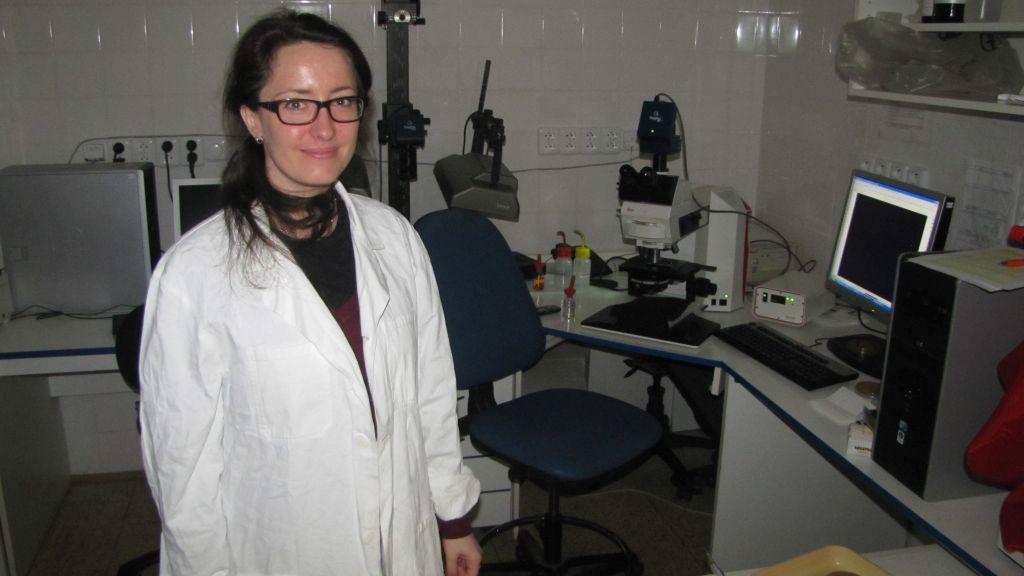 Přírodovědecká fakulta, Fluorescenční mikroskopie kvasinkových kolonií